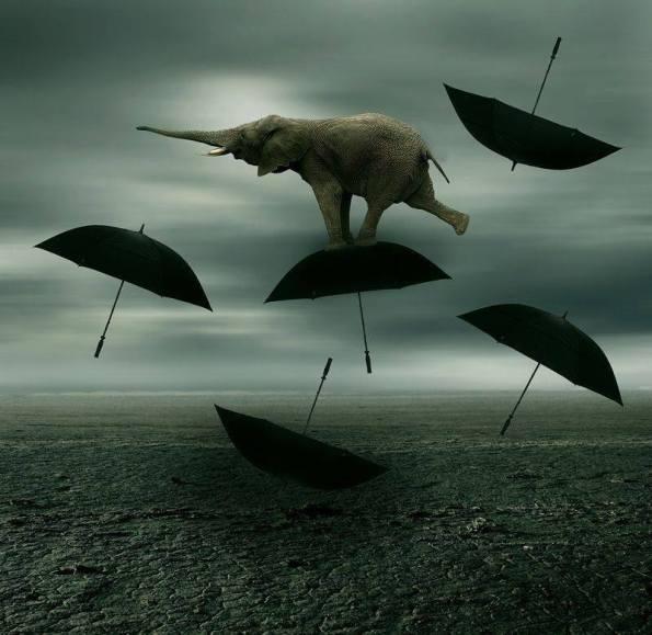 elefante che vola su ombrelli